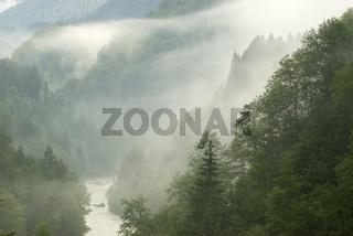 Nebelstimmung im Ennstal bei Grossreifling  im Nationalpark Gesäuse, Steiermark, Österreich