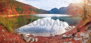 Alpsee lake in autumn colors