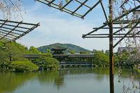 Shrine Lake