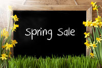 Sunny Narcissus, Chalkboard, Text Spring Sale
