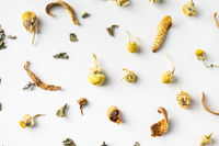 Top view of dry herb on white background desk for mockup