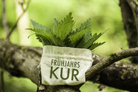 Stinging Nettle in a jute bag with the word Frühjahrskur