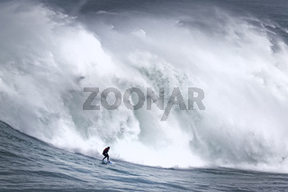 Surfer in einer Welle, Nazare, Portugal, Europa