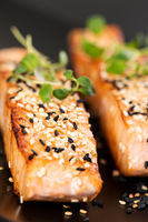 Grilled salmon on black plate