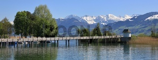 Springtime in Rapperswil