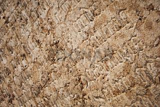 Steininschriften vor der Stadtpfarrkirche Gmunden, Oberösterreich, Österreich, Europa - stone inscription before the parish church in Gmunden, Upper Austria, Austria, Europe