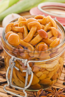 Pickled honey fungus as closeup in a preserving jar