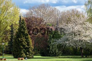 Parkanlage Quedlinburg blühende Landschaft