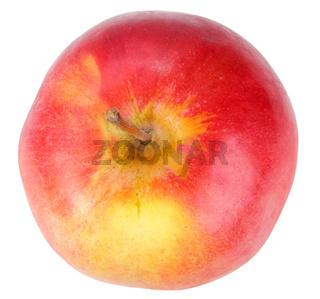 Single a red-yellow apple