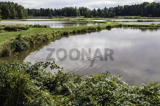 Land der tausend Seen, Tirschenreuther Teichpfanne