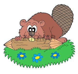 Beaver with log - isolated illustration.