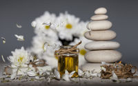 Spa background. Chamomile essential oil with fallen leaves.