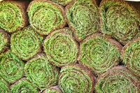 Turf stacked in rolls