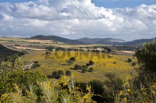 Landschaft, Hügellandschaft, Hazienda, Andalusien, Spanien