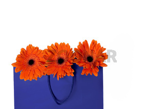 gift bag and flowers