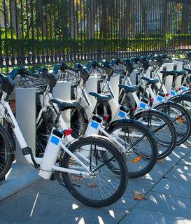 Lots of bycicles for rent