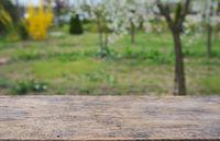 Empty wooden deck table
