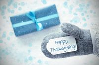 Turquoise Gift, Glove, Text Happy Thanksgiving, Snowflakes