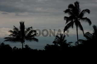 Lombok 884