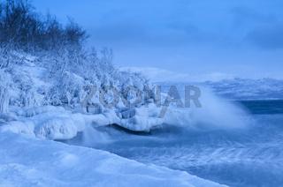 vereiste Felsen und Baeume bei stuermischem Wellengang auf dem See Tornetraesk, Lappland, Schweden