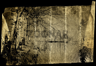 Slice of an old fragile tracing-paper