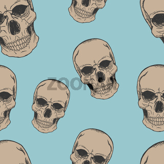 Human scull sketch pattern