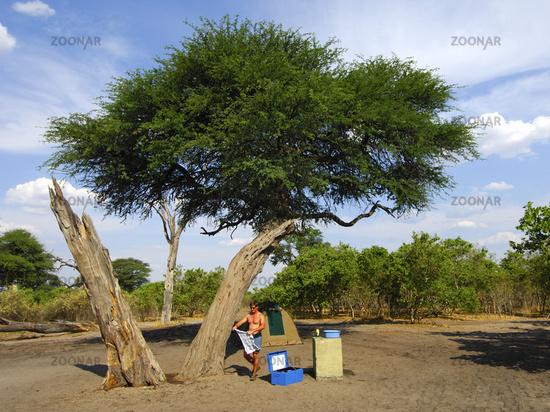 Campsite under an Umbrella Thorn Acacia, Botswana