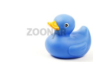 blaue gummiente