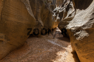 Willis Creek Slot Canyon 30