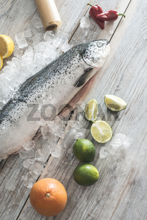 Raw salmon fish in ice and vegetables