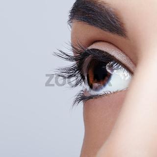 Closeup shot of woman brown th day makeup