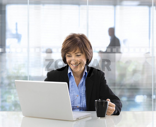 Senior businesswoman using laptop