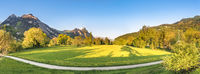 Spring alpine panorama at sunset