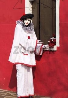 Harlekin-harlequin