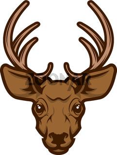 Deer head mascot.