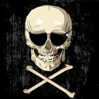 scarry humas skull