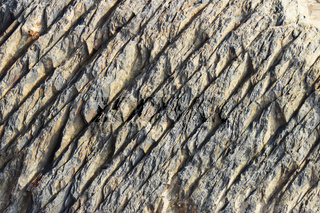 texture of the stone with white veins. presumably shale rock.