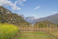 In Val Cavedine