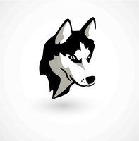 Vector illustration of Husky isolated on white.