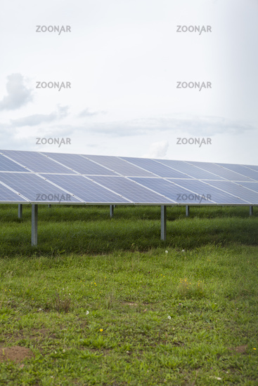 Field with blue siliciom solar cells alternative energy