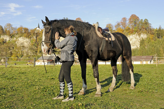 Maedchen zaeumt Pferd auf, englisch geritten