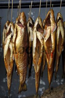 Geräucherte Forellen hängen in einer Räucherkammer