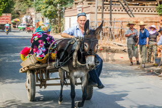 Man with donkey carriage, Turpan, China