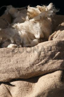 Geschorene Schafwolle im Sack