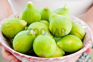 beautiful freshly picked green figs