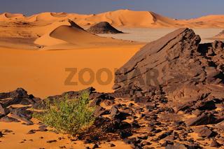 Sahara-Landschaft