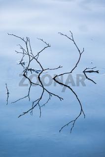 Raureif, Eiskristalle auf einer Wasserfläche mit herausragenden Ästen