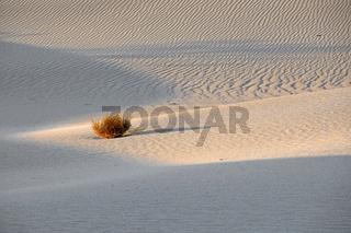 Mesquite Flat Dunes, bei Sonnenaufgang, Death Valley Nationalpar