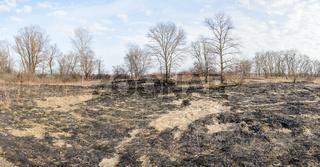 Burnt Land