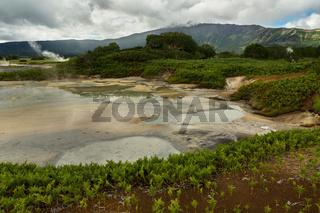 Hydrothermal field in the Uzon Caldera. Kronotsky Nature Reserve